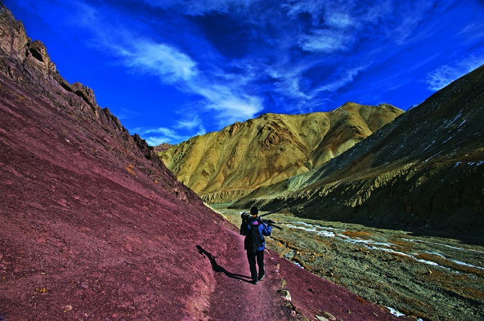 Photo Credithttp://www.natgeotraveller.in/web-exclusive/web-exclusive-month/seven-gorgeous-national-parks-you-must-visit-in-india/page2
