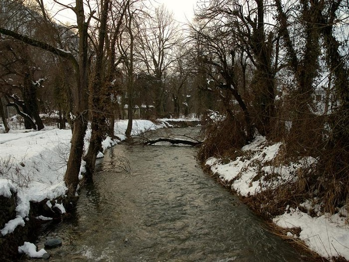 Photo Credit http://trawellguide.com/travel-guide-destination.php?id=14&title=Dachigam_National_park