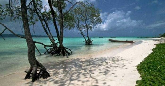 Photo Credit http://www.mytravelo.com/blog/tag/radhanagar-beach-in-andaman-and-nicobar/