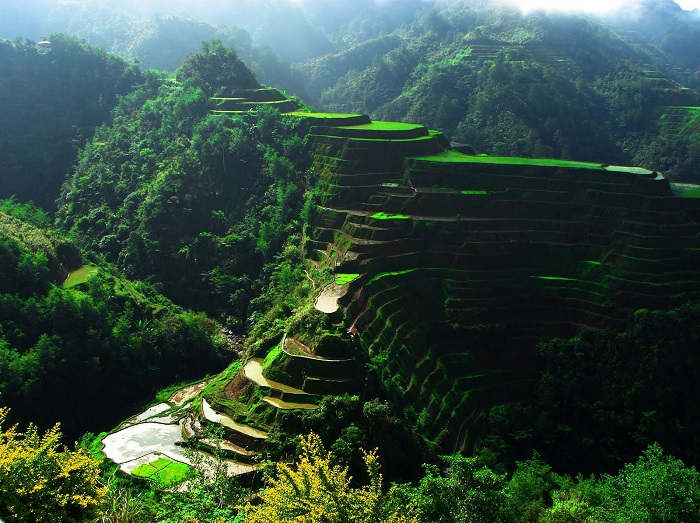 Photo Credit  http://www.playbull.com/beautiful-places/banaue-rice-terraces-philippines/