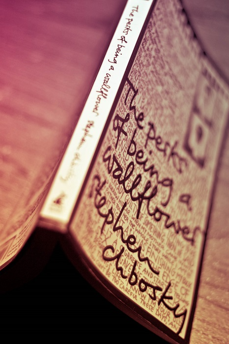Photo Credit  http://musingsofareader.com/2014/06/04/book-review-of-the-perks-of-being-a-wallflower/