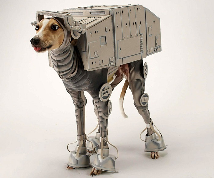 Photo Credit http://www.thisiswhyimbroke.com/at-at-star-wars-dog-costume