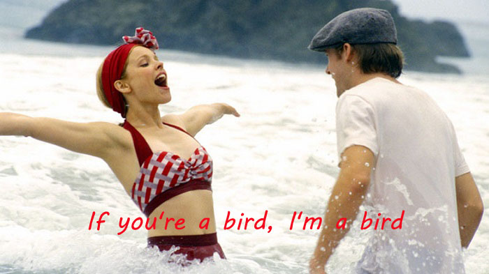 Photo Credit http://www.hdmoviesout.com/2015/01/the-notebook-movie-720p-hd-free-download.html