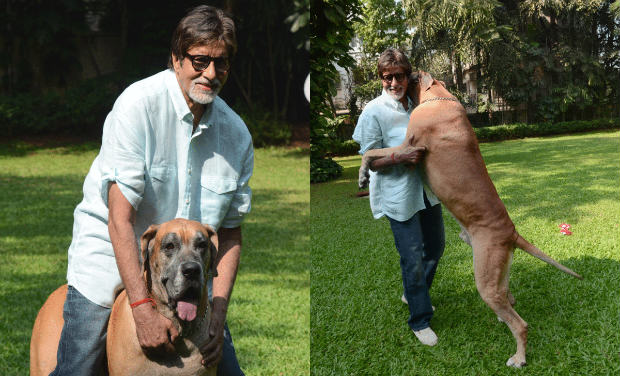 Photo Credit http://archives.deccanchronicle.com/sites/default/files/mediaimages/gallery/2013/May/amitabh.jpg.jpg